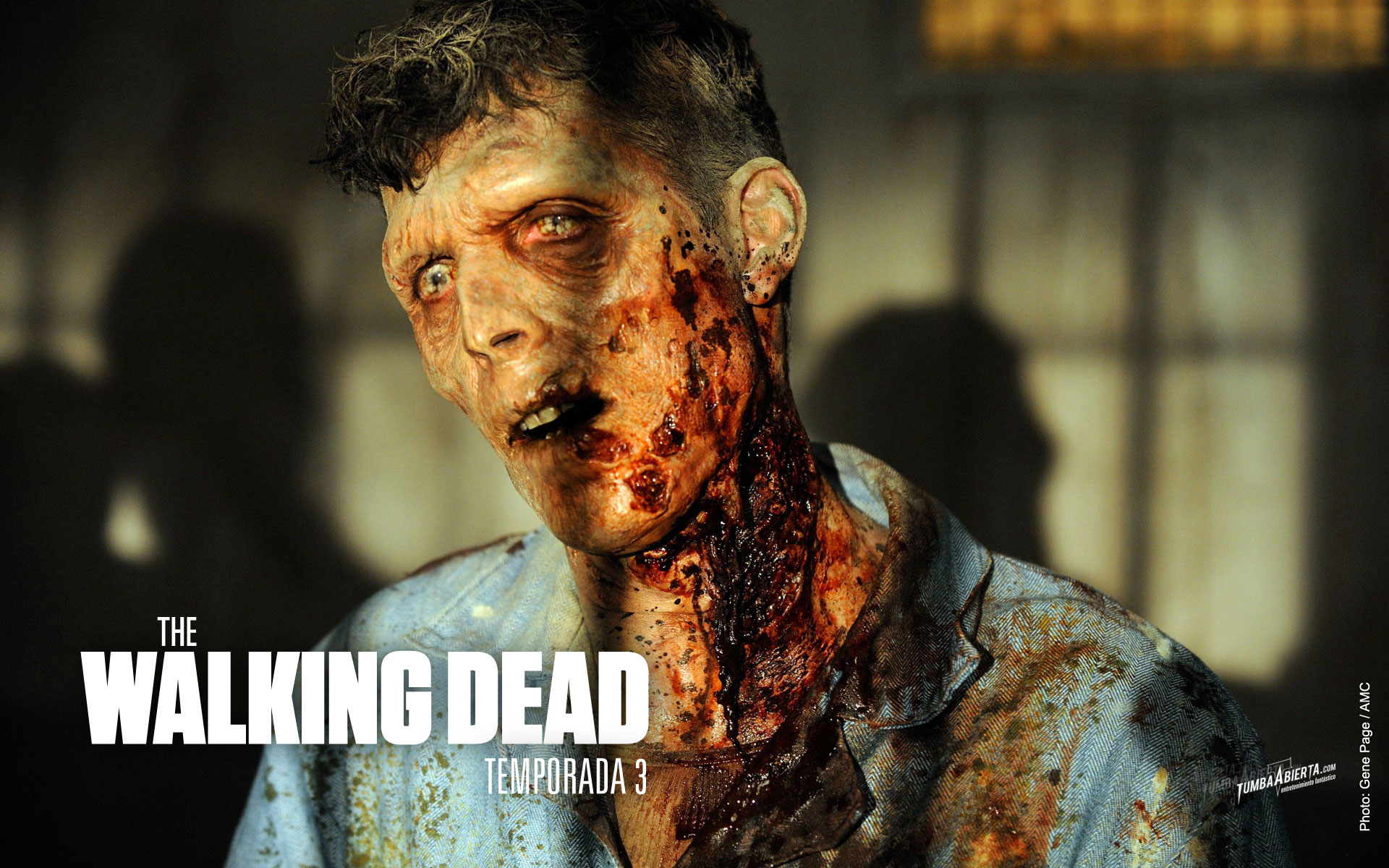 Wallpaper. The Walking dead Temporada 3