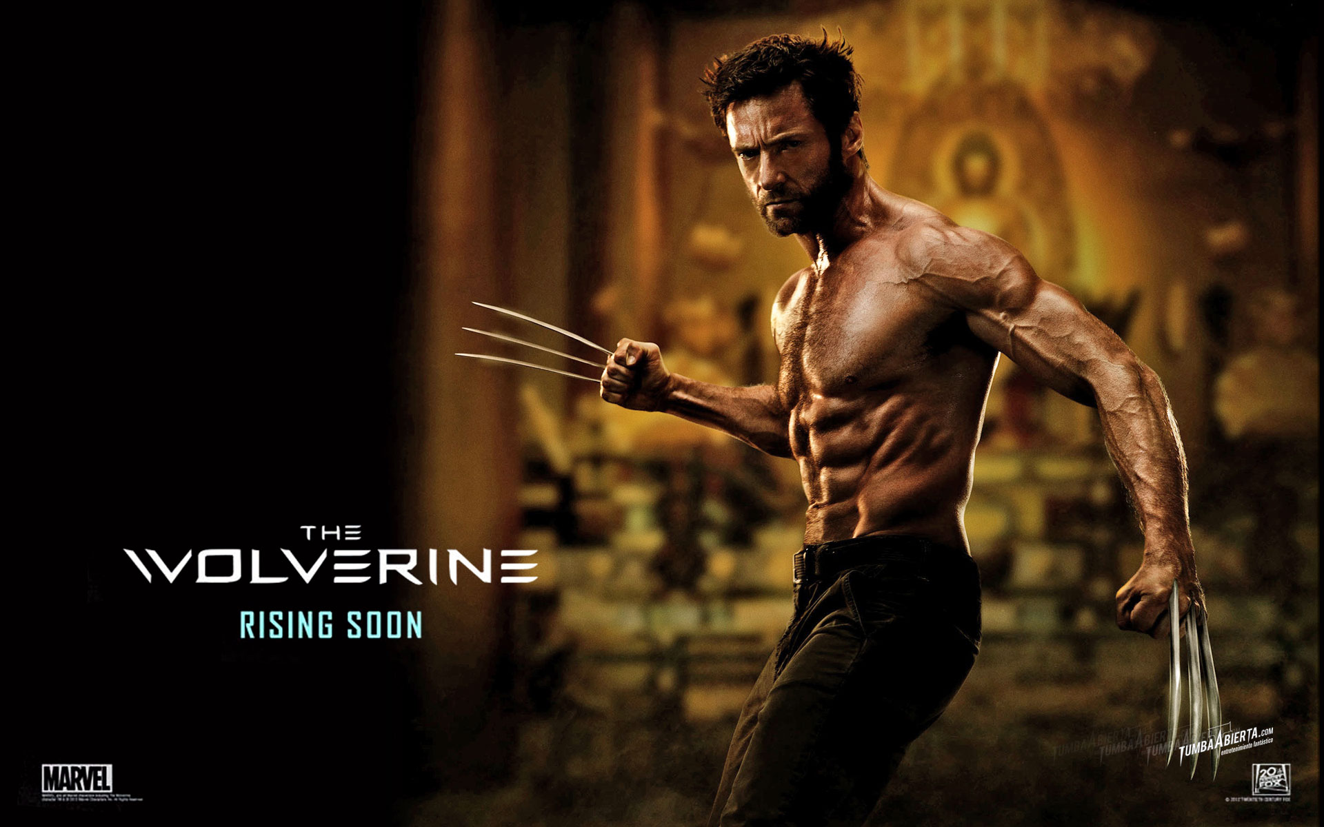 The Wolverine - Wallpaper HD