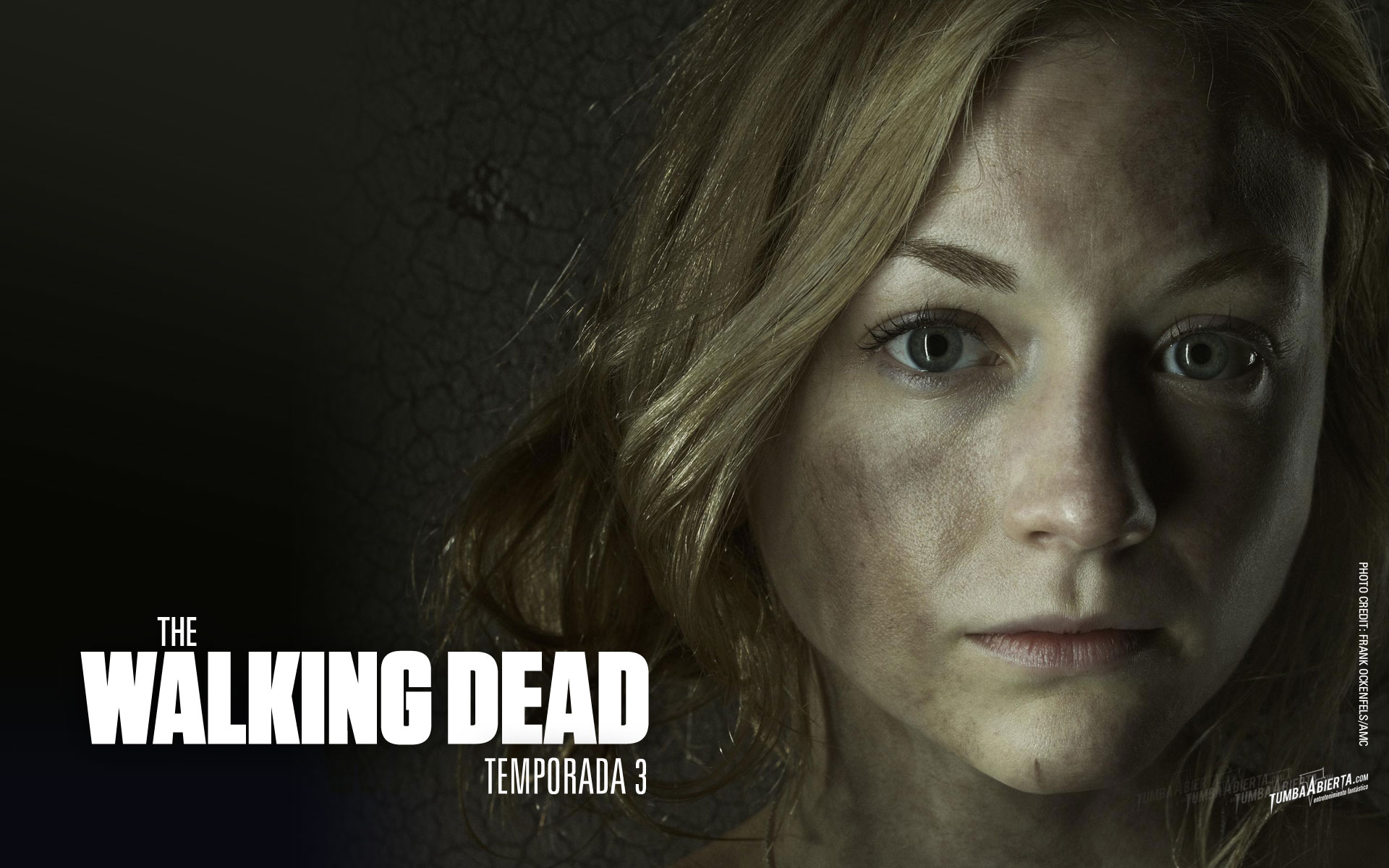 Wallpaper.- The walking dead temporada 3