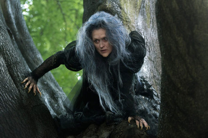 Meryl Steep. Into the woods
