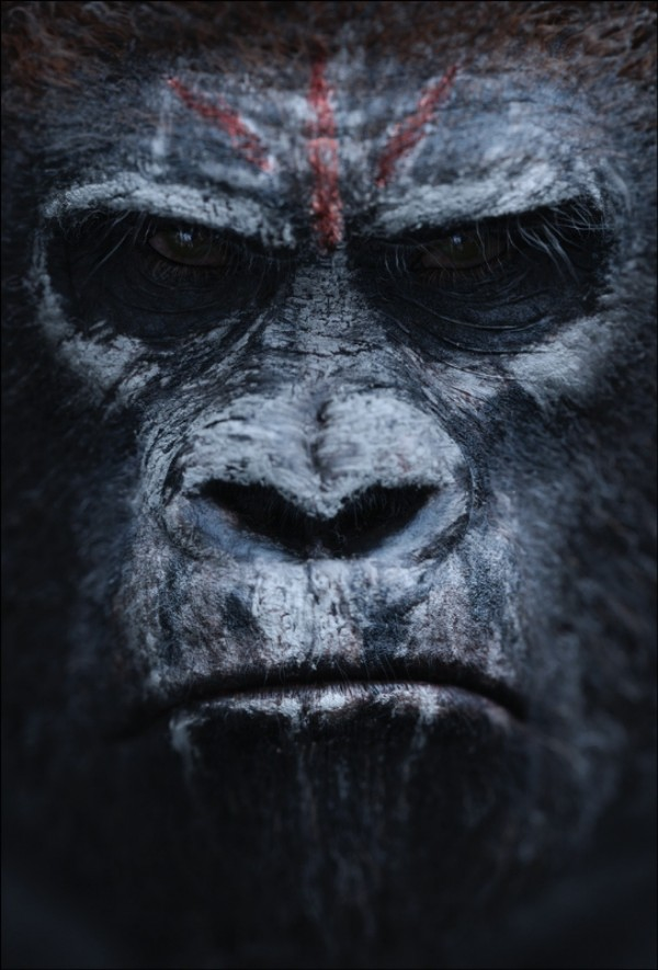 Póster. Dawn of the Planet of the apes