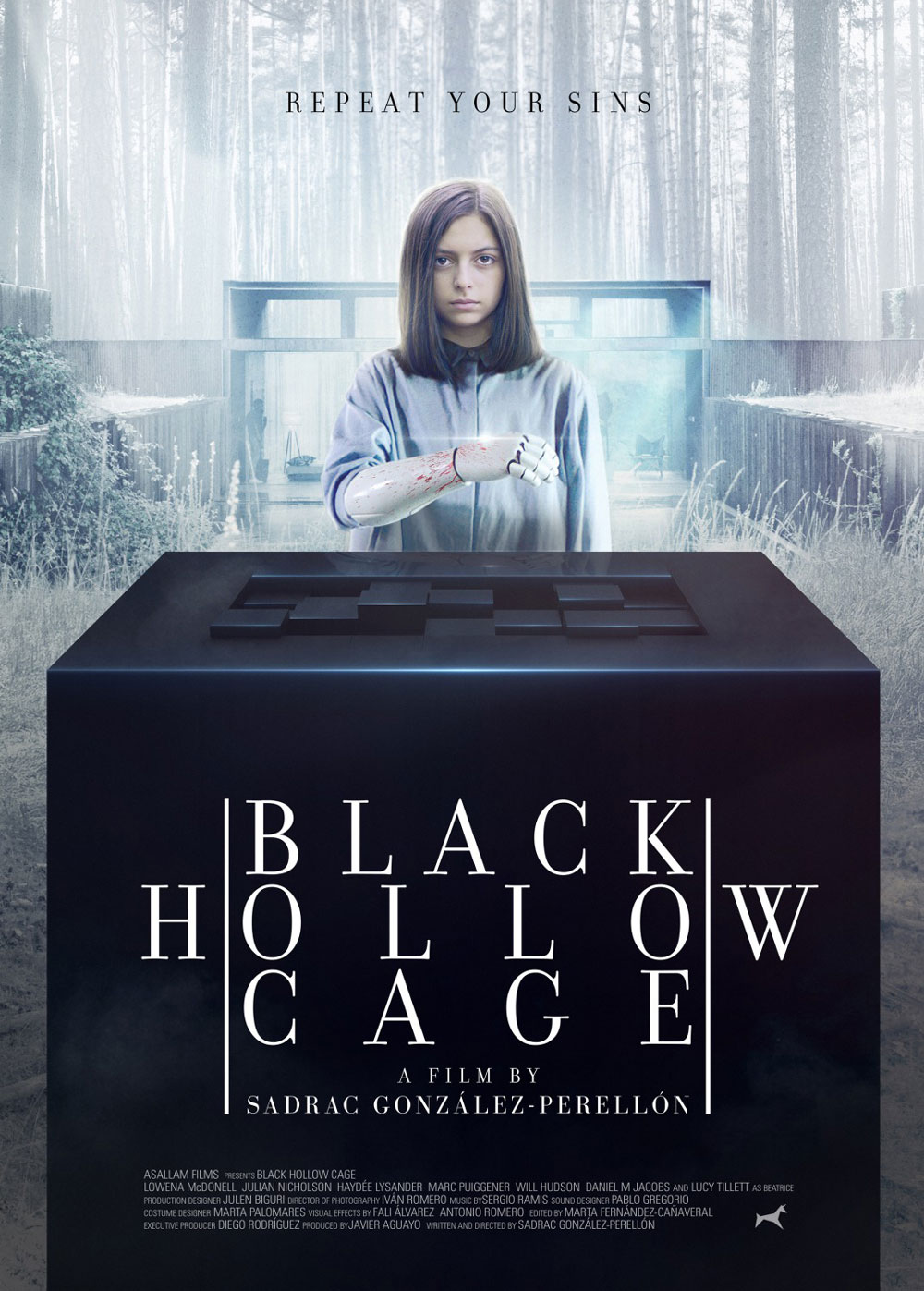 Black Hollor Cage poster