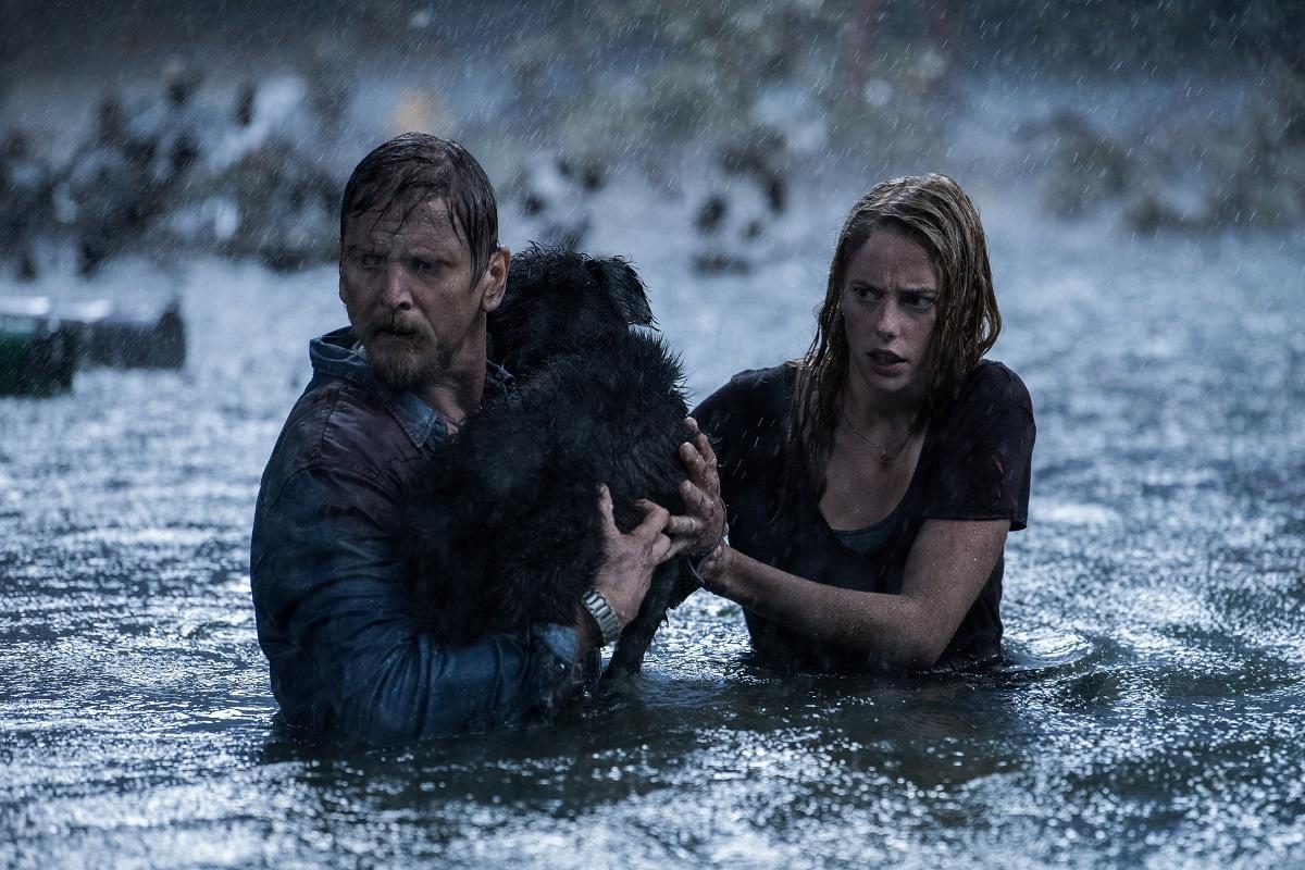 'Infierno bajo el agua', de Alexandre Aja. | Paramount Pictures