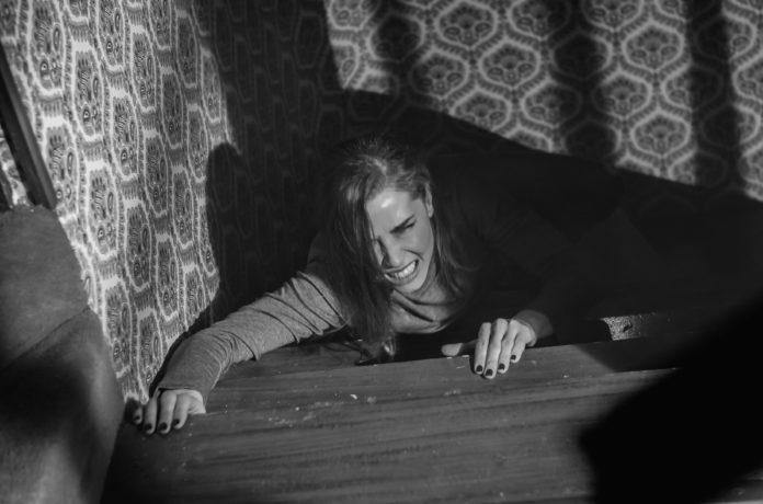 'Vampus Horror Tales'