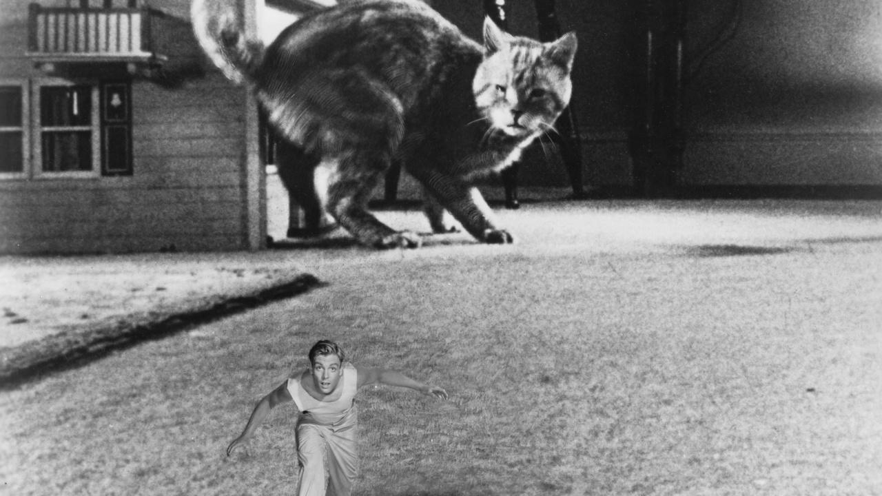 'El increíble hombre menguante' (Jack Arnold, 1957)